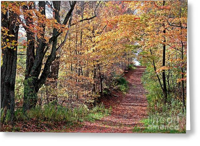 Up The Wooded Lane Greeting Card