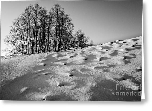 Up To The Hill Bw Greeting Card