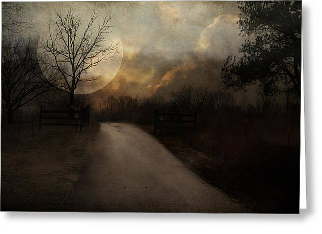 Uphill In The Moonlight Greeting Card by Jai Johnson