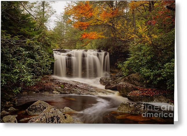 Upper Falls Waterfall On Big Run River  Greeting Card