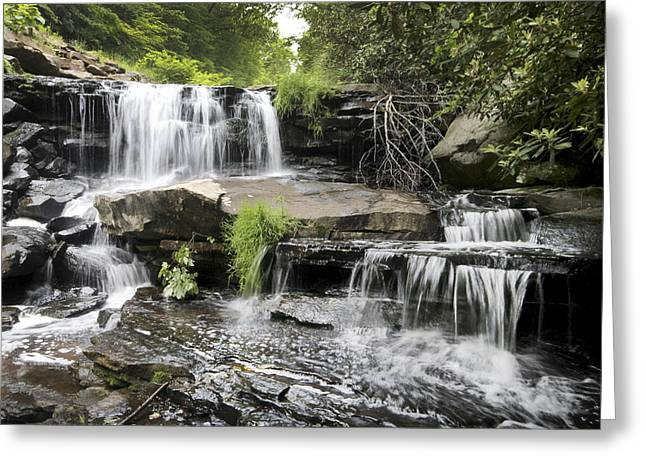 Upper Goose Creek Falls Greeting Card