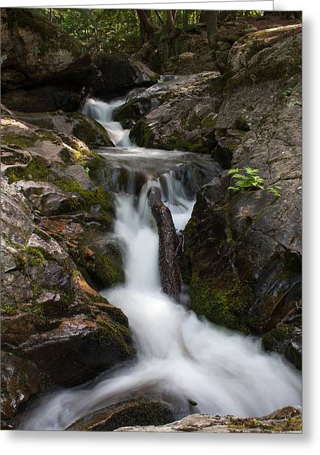 Upper Pup Creek Falls Greeting Card