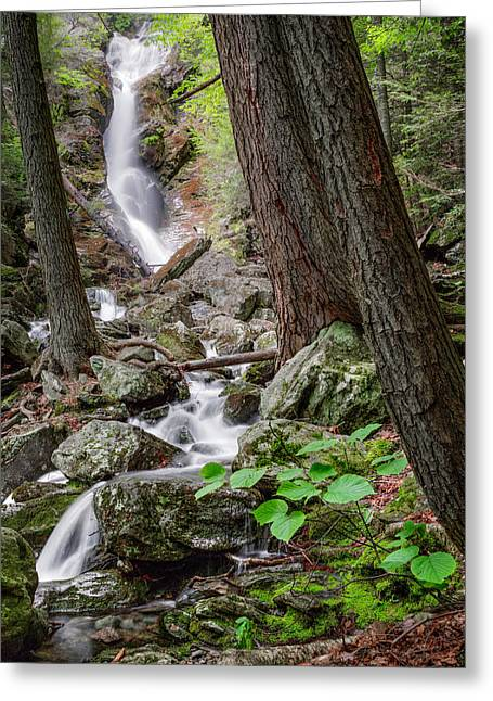 Upper Race Brook Falls Greeting Card by Bill Wakeley