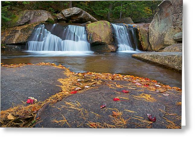 Upper Screwauger Falls Greeting Card by Darylann Leonard Photography