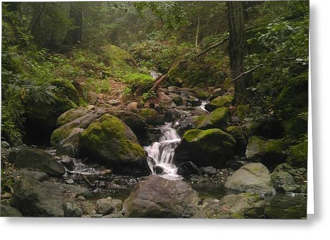 Upstream Greeting Card by Justin Moranville