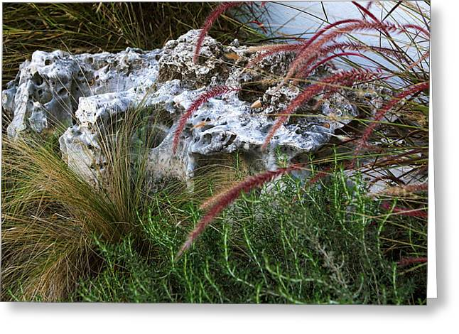 Urban Business Landscaping Greeting Card by Linda Phelps