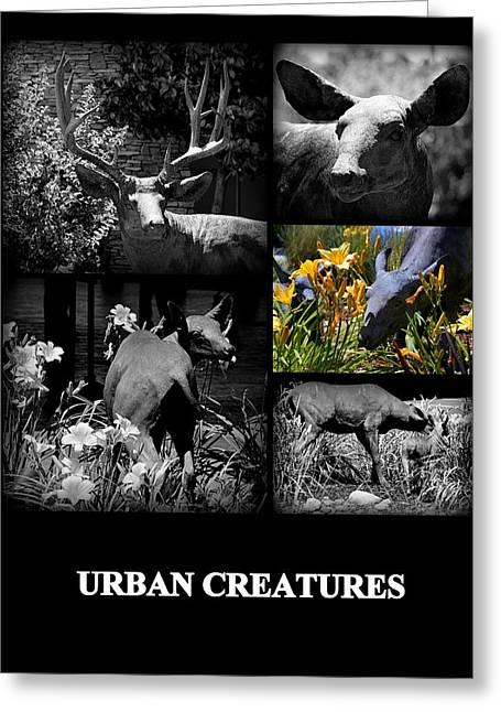 Urban Creatures Greeting Card by AJ  Schibig
