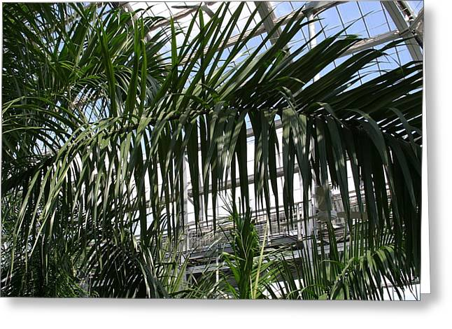 Us Botanic Garden - 121216 Greeting Card