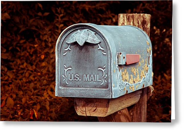 U.s. Mail Approved Greeting Card by Eti Reid
