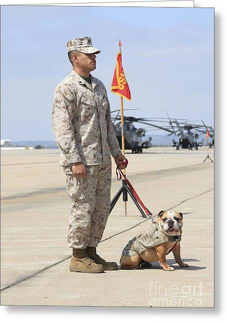 Greeting Card featuring the photograph U.s. Marine And The Official Mascot by Stocktrek Images