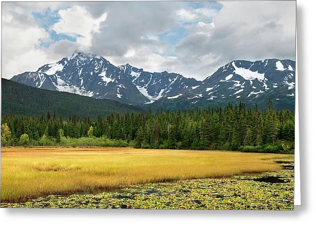 Usa, Alaska, Kenai Peninsula Greeting Card by Jaynes Gallery