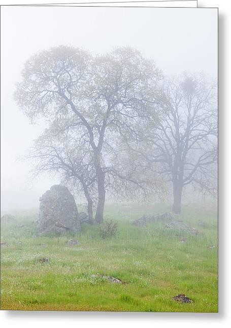 Usa, California, Bullion Mountain Greeting Card by Jaynes Gallery