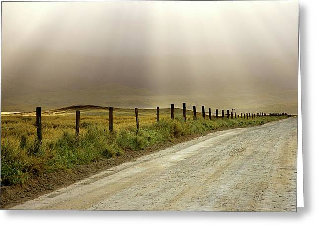 Usa, California Country Road Lit By Sun Greeting Card