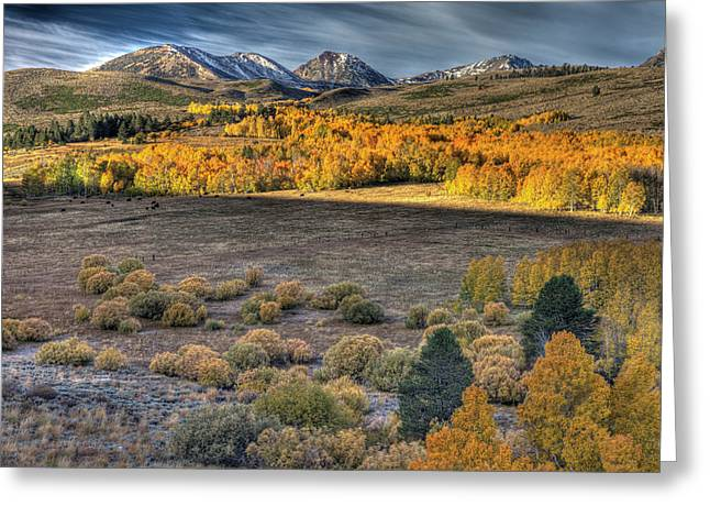 Usa, California Landscape Of Eastern Greeting Card by Jaynes Gallery