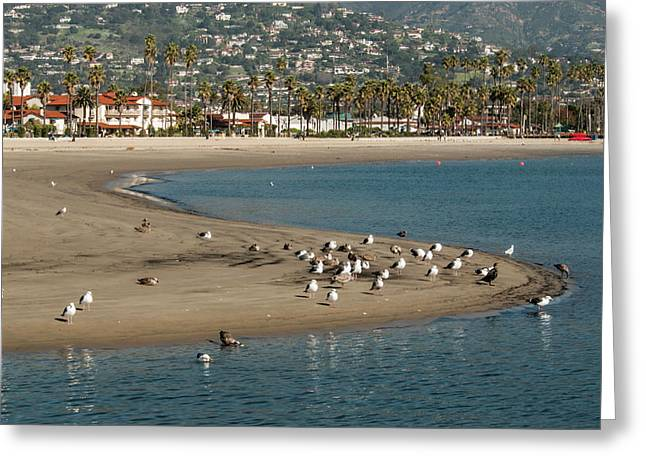 Usa, California, Santa Barbara, Views Greeting Card by Alison Jones