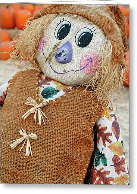 Usa, California Scarecrow At Pumpkin Greeting Card