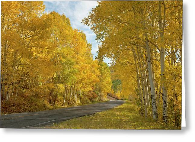 Usa, Colorado, Black Canyon Greeting Card by Jaynes Gallery