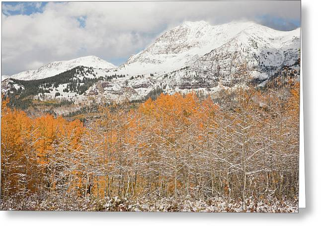 Usa, Colorado, Gunnison National Greeting Card by Jaynes Gallery