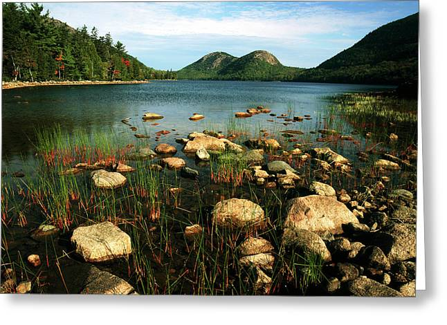 Usa, Maine, Acadia National Park, View Greeting Card by Adam Jones
