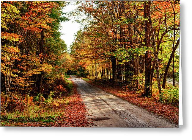 Usa, Maine, Bethel Greeting Card by Bill Bachmann