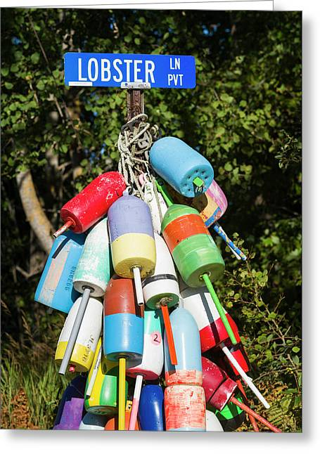 Usa, Maine, Owls Head, Sign For Lobster Greeting Card