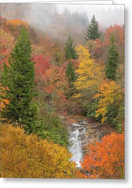 Usa, North Carolina, Bubbling Springs Greeting Card by Jaynes Gallery