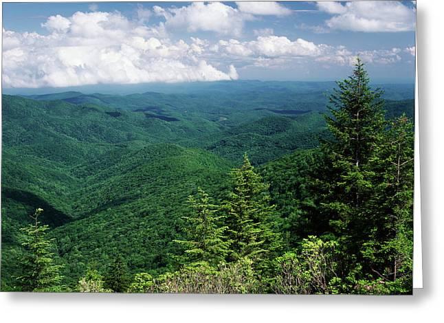 Usa, North Carolina, View Of Pisgah Greeting Card by Adam Jones