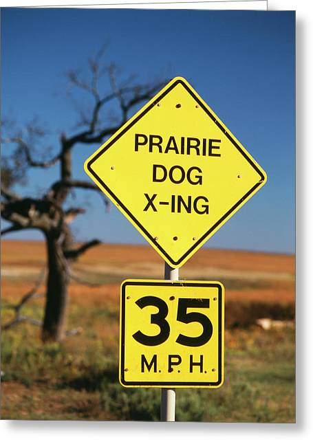 Usa, Oklahoma, Speed Limit Road Sign Greeting Card by David Barnes