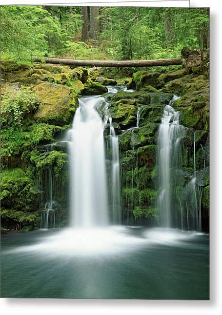 Usa, Oregon, Cascade Range, Umpqua Greeting Card by Jaynes Gallery