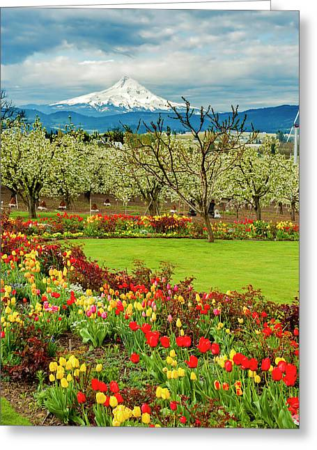 Usa, Oregon, Hood River Greeting Card by Richard Duval