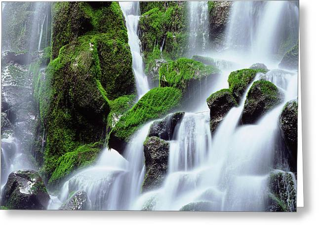Usa, Oregon, Mount Hood, Ramona Falls Greeting Card by Jaynes Gallery