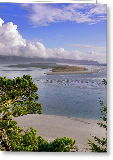 Usa, Oregon Netarts Bay In Cape Lookout Greeting Card by Jaynes Gallery