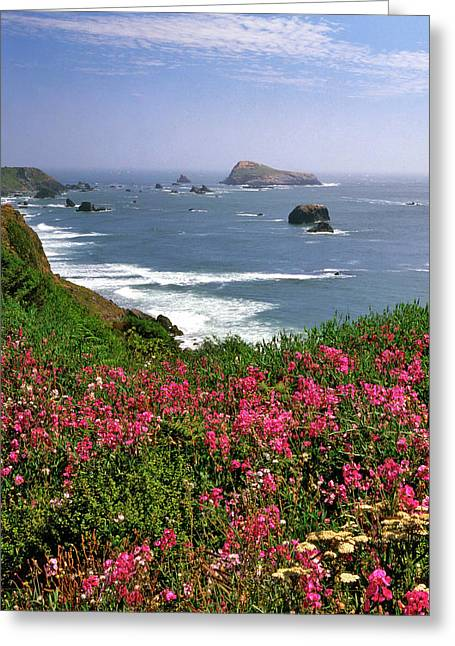 Usa, Oregon Ocean Landscape Of Goat Greeting Card by Jaynes Gallery