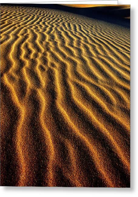 Usa, Oregon, Oregon Dunes National Greeting Card