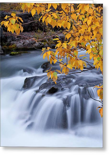 Usa, Oregon Rogue River Waterfalls Greeting Card