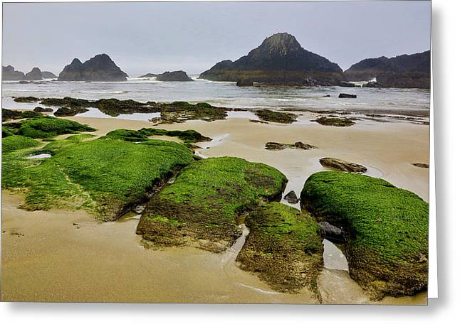 Usa, Oregon, Seal Rock State Park Greeting Card by Jaynes Gallery