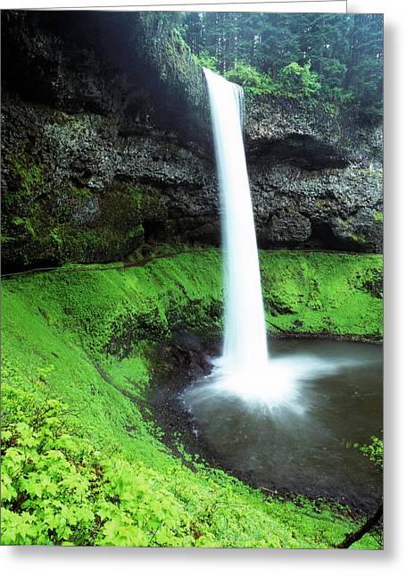 Usa, Oregon, Silver Falls State Park Greeting Card