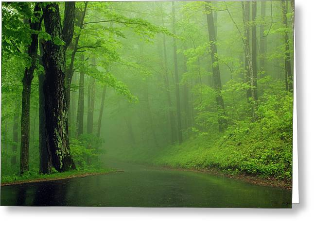 Usa, Tennessee, Foggy Morning Greeting Card by Joanne Wells
