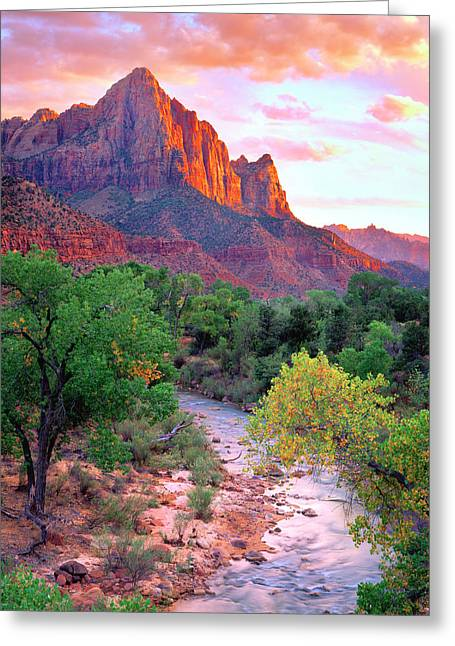 Usa, Utah, Zion National Park At Sunset Greeting Card by Jaynes Gallery