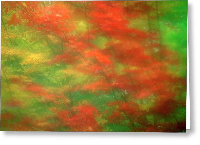 Usa, Vermont Abstract Of Maple Trees Greeting Card by Jaynes Gallery