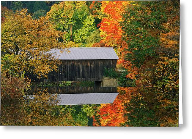 Usa, Vermont Covered Bridge And Autumn Greeting Card