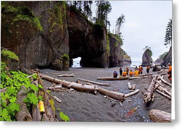 Usa Washington State A Group Of Sea Greeting Card by Gary Luhm