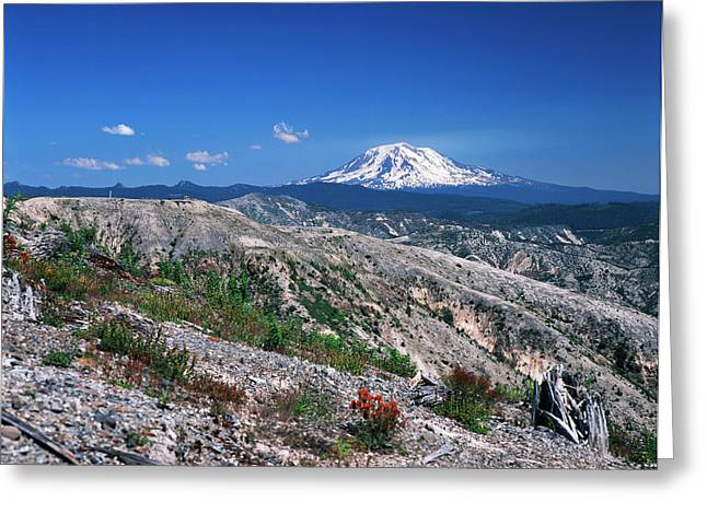 Usa, Washington State, View Of Mt Adams Greeting Card