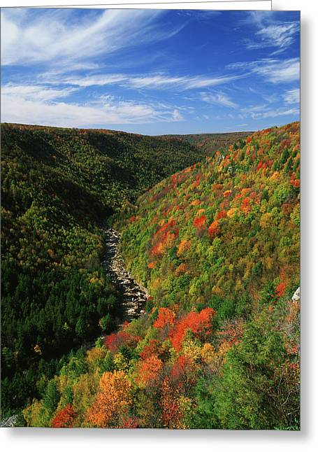 Usa, West Virginia, Blackwater Falls Greeting Card by Adam Jones