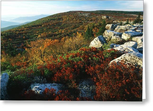 Usa, West Virginia, Monongahela Greeting Card by Adam Jones