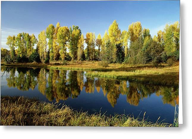 Usa, Wyoming, Grand Teton National Greeting Card by Stuart Westmorland