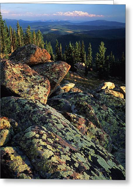 Usa, Wyoming, Lichen Covered Greeting Card by Scott T. Smith