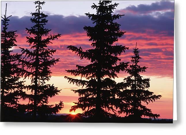 Usa, Wyoming, Medicine Bow National Greeting Card