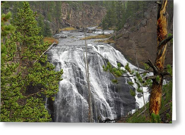 Usa, Wyoming, Waterfall, Yellowstone Greeting Card by Gerry Reynolds