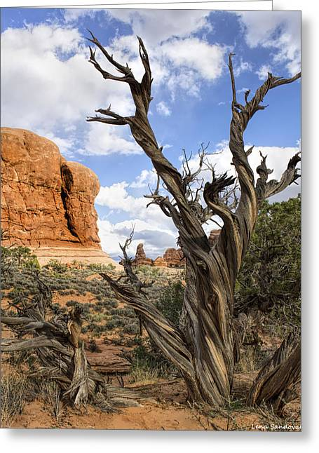 Utah Juniper Greeting Card by Lena Sandoval-Stockley